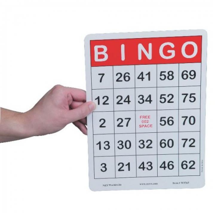 Jumbo Bingo Cards (100)