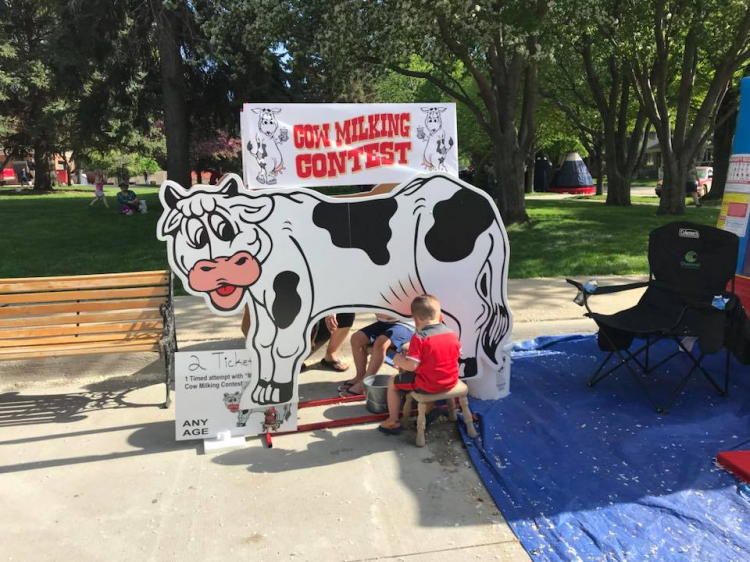 Molly the Milking Cow
