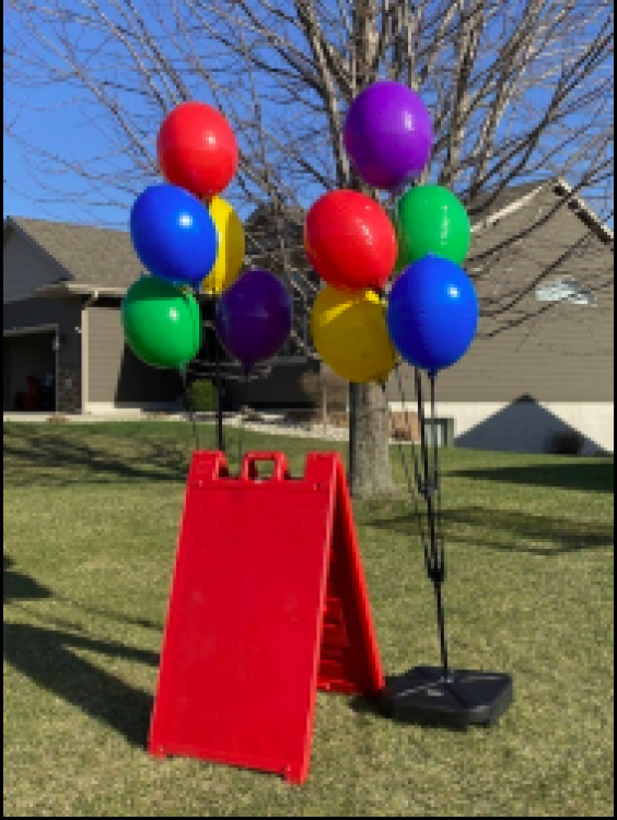 Vinyl Balloons + Sign Package